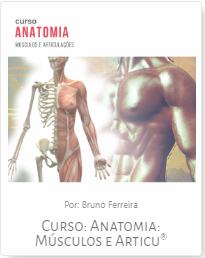 curso-anatomia-musculos-e-articulacoes